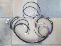 Main harness for the Le Mans.
